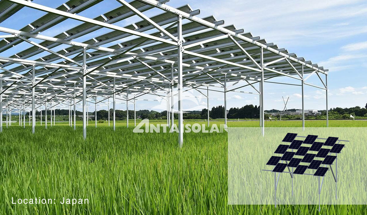 Antaisolar Agricultural Farmland Mounting System